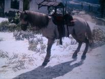 Red Dead Redemption-guide