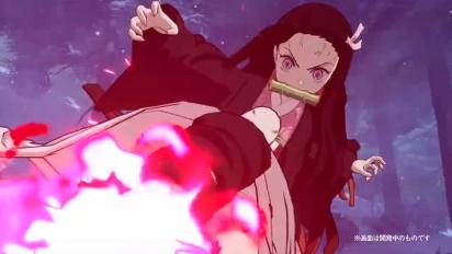 Demon Slayer: Kimetsu no Yaiba - Hinokami Keppuutan - Nezuko Kamado
