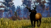 Open Country : Gameplay trailer