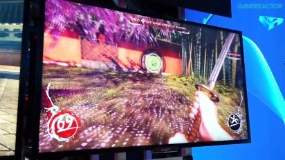 E3 2014: Shadow Warrior - Gameplay