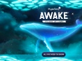 MapleStory Awake: Flicker of Light - All You Need To Know (Sponsored)