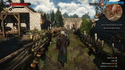 The Witcher 3: Wild Hunt - Nintendo Switch Gameplay